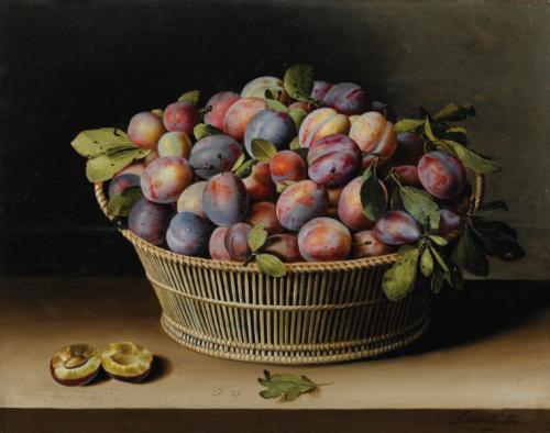 Louyse Moillon, Panier de quetsches, 1629, huile sur bois, 40,5 x 52,5 cm